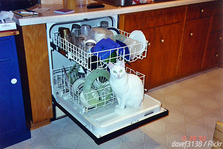 The best way to move a dishwasher